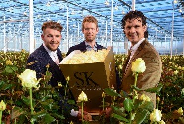 Avalanche+® shines (and wins!) at Keukenhof